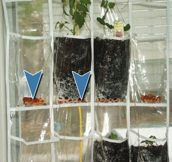 Inside vertical garden cheap garden verticalgarden for Cheap vertical garden