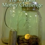 The Weekly Money Challenge [easy money saving]