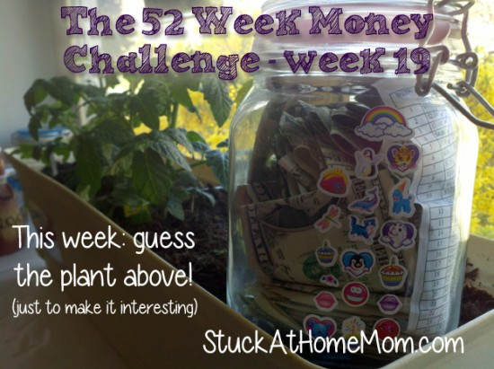 The 52 Week Money Challenge – week 19