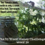 The 52 Week Money Challenge – week 20