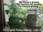 The 52 Week Money Challenge - week 21
