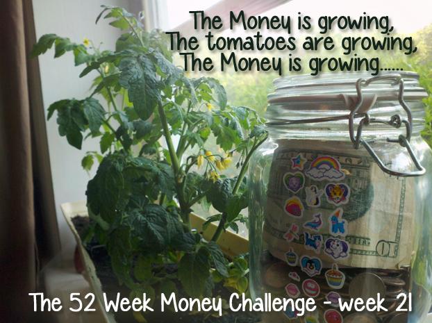 The 52 Week Money Challenge - week 21