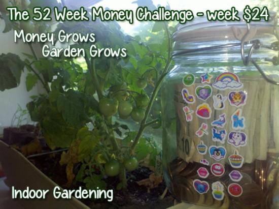 The 52 Week Money Challenge - Week $24 #52weekmoneychallenge