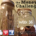 The Money Challenge Week 36 with Printable Chart – Save $1,378.00