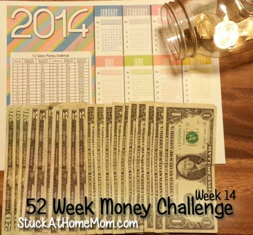 52 Week Money Challenge Week 14 #52weekmoneychallenge