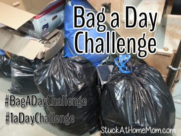 A Bag A Day Challenge!  #BagADayChallenge