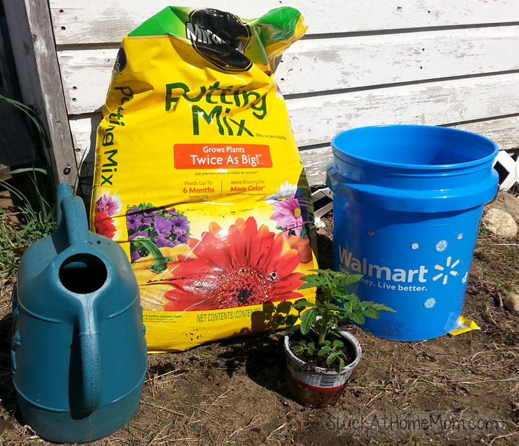 How to Bucket Garden