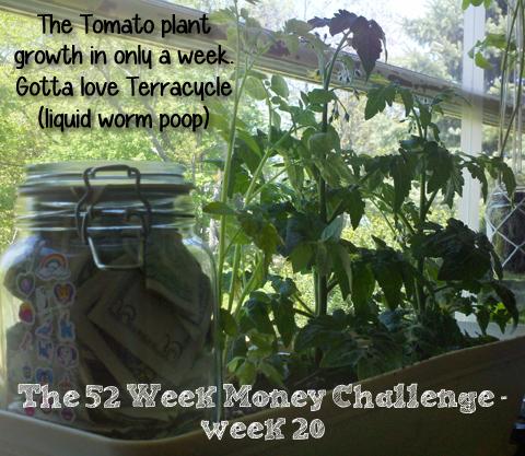 The 52 Week Money Challenge – week 20