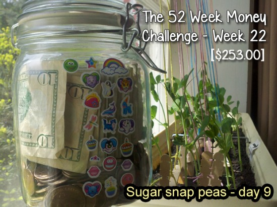 The 52 Week Money Challenge - Week 22