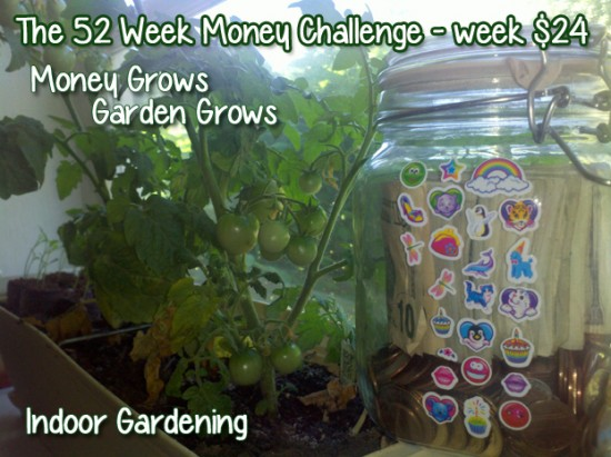 The 52 Week Money Challenge - Week $24 #52weekmoneychallenge