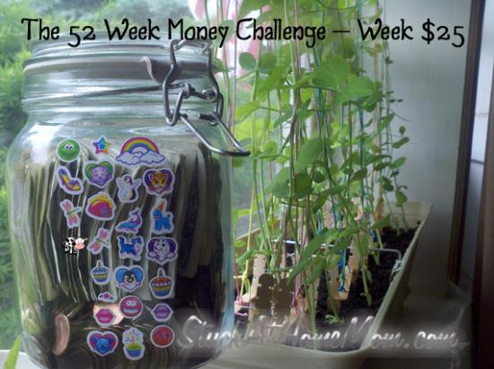 #52weekmoneychallenge