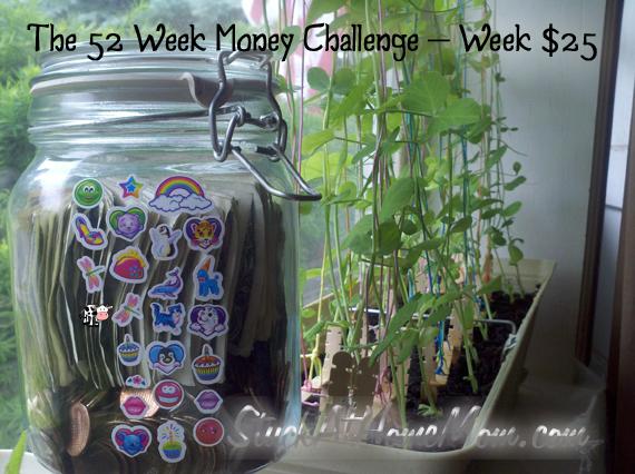The 52 Week Money Challenge – Week $25 #52weekmoneychallenge