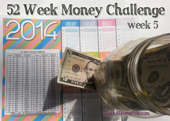 52 Week Money Challenge Week 5