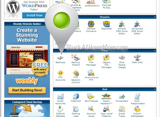 How to Backup a Database Using cPanel Step by Step with Pictures