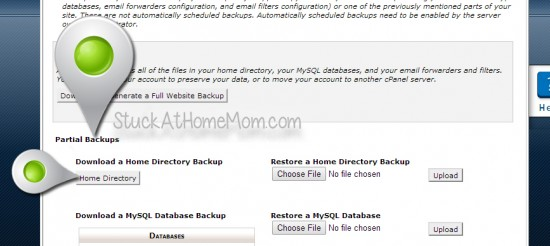 How to Backup a Website Using cPanel Step by Step with Pictures
