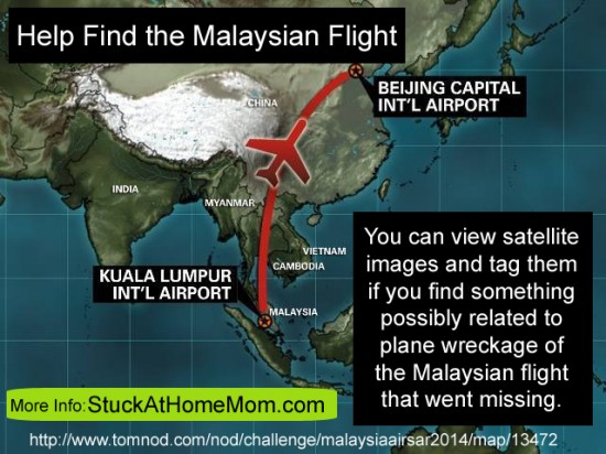 Help Find the Malaysian Flight
