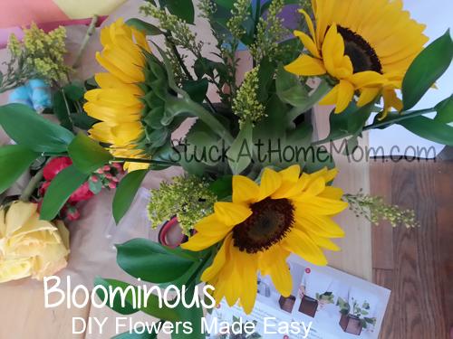Bloominous #bloominous
