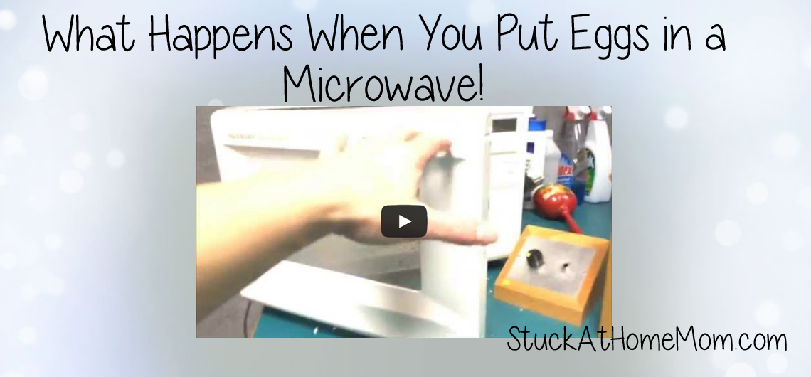 What Happens When You Put Eggs in a Microwave! WJBQ #wjbq