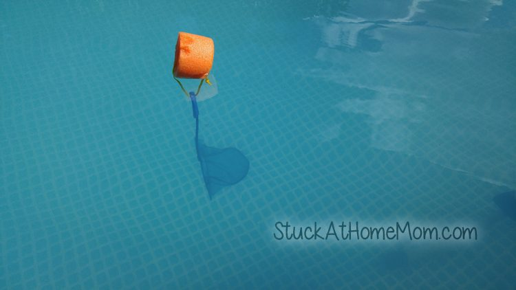 Pool Skimmer Hack #LifeHack