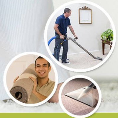 Choose Environmentally Safe Carpet Cleaners