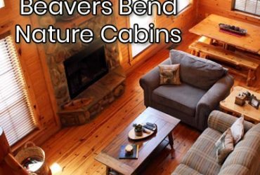 The New Line of Beavers Bend Nature Cabins