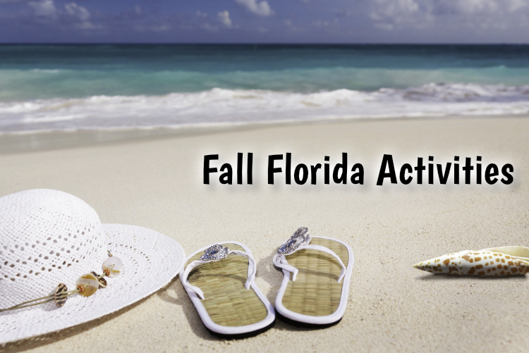 Fall Florida Activities