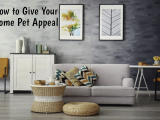 How to Give Your Home Pet Appeal